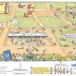 Brasília Através dos Tempos