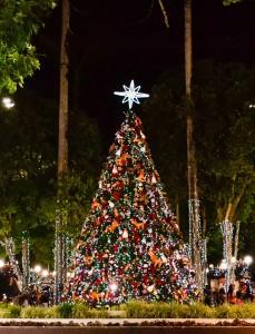 Natal de Garanhuns. Foto Camila Queiroz