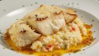 O Restaurante e Pizzaria Prima Deli, localizado em Boa Viagem, […]